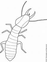 Termite Bug Embroidery Patterns Coloring Outline Insects Pages Bugs Drawings Drawing Termites Insect Pixels Lightupyourbrain Pattern Stencils Colouring Printable Outlines sketch template
