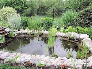bassin pour petit jardin dootdadoocom idees de With photo de bassin de jardin