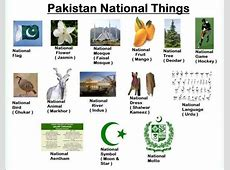 National Things Of Pakistan XciteFunnet