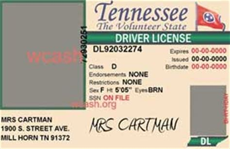 Template Tennessee Drivers License (psd)