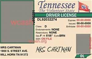 template tennessee drivers license editable photoshop file With tennessee drivers license template