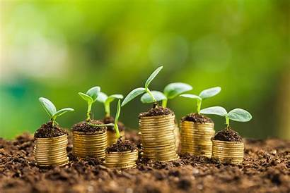 Business Management Money Growth