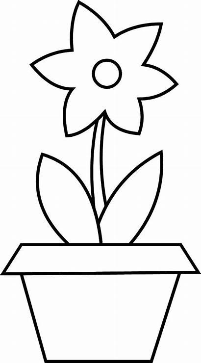 Vase Clipart Colouring Coloring Flower Pot Transparent