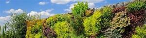 Mur Végétal Extérieur : mur vegetal exterieur prix 28 images mur vegetal ~ Premium-room.com Idées de Décoration