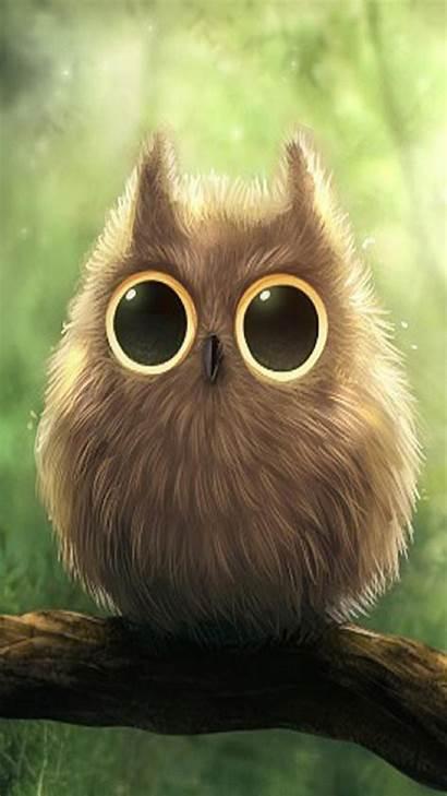 Wallpapers Owl Iphone Android Cartoons Wallpapersafari