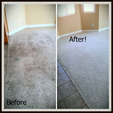 carpets cleanses and grout on