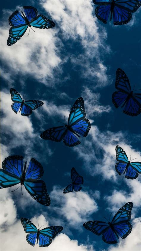 created by skarlethlunna butterfly wallpaper iphone