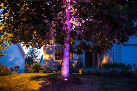 led color changing tree uplight contemporary landscape