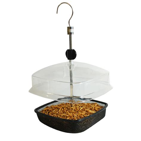 hanging mealworm bird feeder with canopy accessories