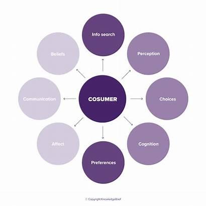 Consumer Behaviour Examples Definition Behavior Economics Consumers