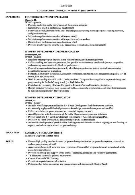 professional development  resume  radaircarscom