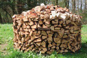 Holzstamm Richtig Trocknen : brennholz lagern tipps und ideen ~ Eleganceandgraceweddings.com Haus und Dekorationen