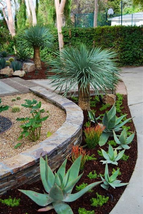 plants for around the pool area best 25 landscaping around pool ideas on pinterest