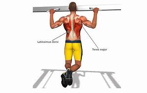 Pull Up Bar Shoulder Workout