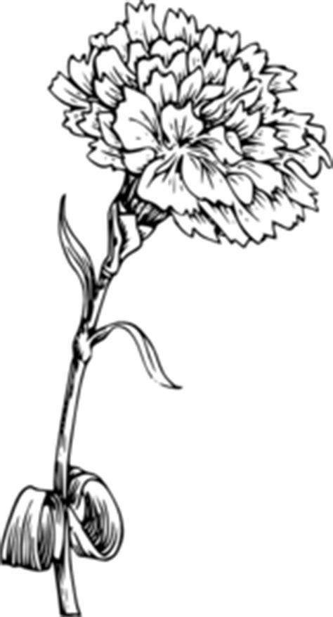 Carnation Clip Art at Clker.com - vector clip art online