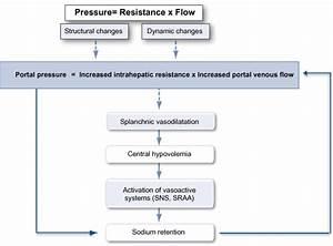 Pathophysiology Of Hypertension Flowchart - Create A Flowchart