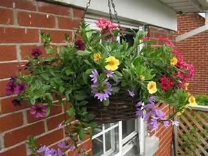 Jardiniere Chez Jardiland : les 76 meilleures images propos de balconni res sur ~ Premium-room.com Idées de Décoration