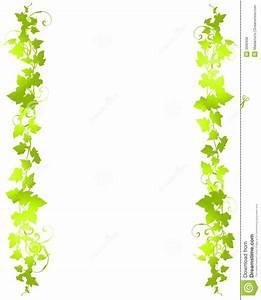 Jungle Vine Border Clipart - Clipart Suggest