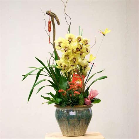 potted plant arrangements bugs buds