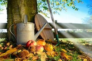 Garten Im Herbst : gartengestaltung im november selber machen heimwerkermagazin ~ Whattoseeinmadrid.com Haus und Dekorationen