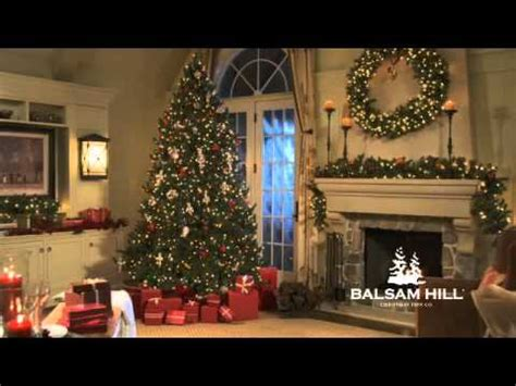 balsam hill vermont white spruce christmas tree youtube