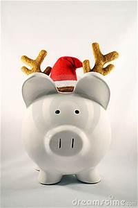 Christmas Pig Royalty Free Stock graphy Image
