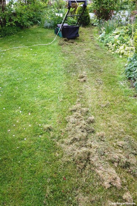 Wann Soll Rasen Vertikutieren by Richtig Vertikutieren Und Den Rasen Optimal Pflegen