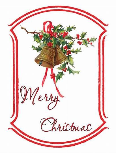 Christmas Gift Tag Printable Holly Digital Frame