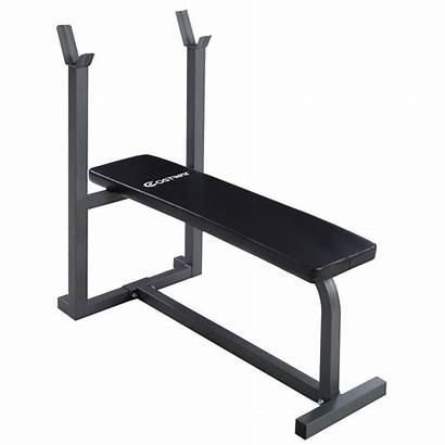 Bench Weight Flat Sit Fitness Lifting Workout