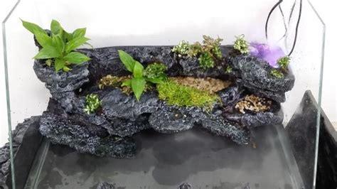 paludarium paludaria tank landscape background board pu