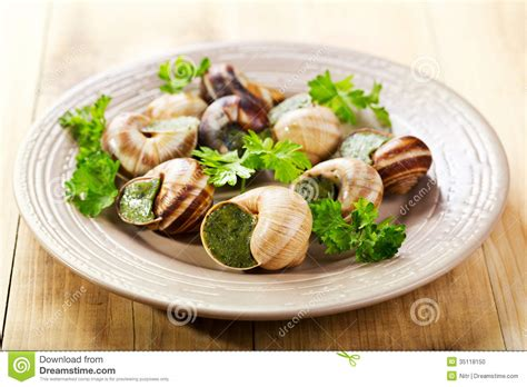 cuisine escargots plate of escargots stock photo image of background