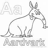 Aardvark Coloring Animal Anteater Coloringfolder Termites Mammals sketch template