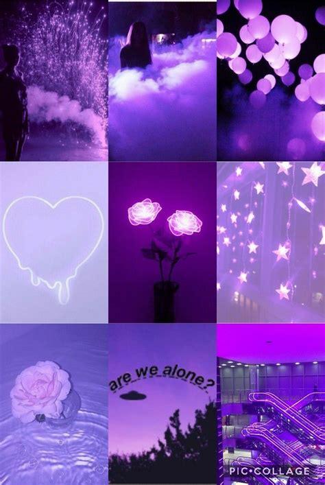 pin  daisy   asteticswallpaper   purple