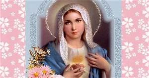 A Journey of Faith, Hope, and Love Through Our Mother Mary ...