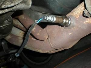 Mustang Oxygen Sensor  O2   87-93  5 0