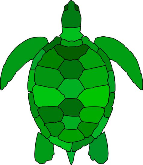 Turtle clip art Free Vector / 4Vector