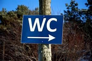 Käse Aufbewahren Ohne Plastik : toilettenpapier ohne plastik 3 alternativen f rs stille rtchen i ecoyou ~ Watch28wear.com Haus und Dekorationen