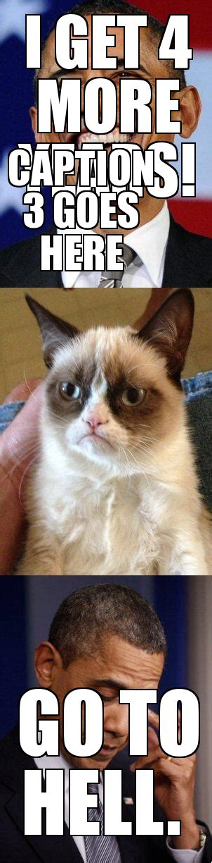 Mean Kitty Meme - mean cat meme creator image memes at relatably com