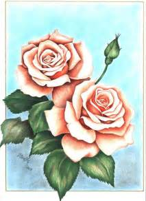 Rose Color Pencil Flower Drawings