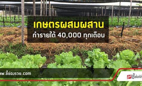 ธำรงฟาร์ม เกษตรผสมผสานแบบอินทรีย์ สไตล์คนรุ่นใหม่ สร้างทั้งความสุขและรายได้ไปพร้อมกัน!
