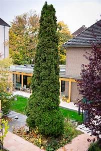Garten Von Oben : hospizhaus hospizarbeit region ~ Orissabook.com Haus und Dekorationen