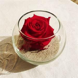 Bouton De Rose : bouton de rose stabilis rouge ~ Dode.kayakingforconservation.com Idées de Décoration