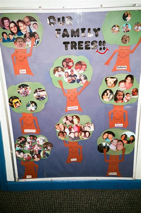 family tree bulletin board ideas for preschool family tree bulletin the family tree bulletin board is a 615