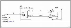 Toyota Corolla Repair Manual  Mass Or Volume Air Flow Circuit - Sfi System