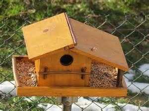 cabane a oiseaux en bois fabriquer une cabane en bois pour oiseaux mzaol