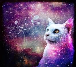 galaxy cat galaxy cat by skinagainstface on deviantart