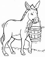 Donkey Coloring Pages Clipart Drawing Donkeys Clip Cliparts Clipartix Jackass Cartoon Cool Facts Clipartmag Library Face Animal Children Coloringkids sketch template