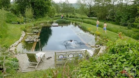 Swimming Pond : Biotop Natural Swimming Ponds And Pools With Kingcombe
