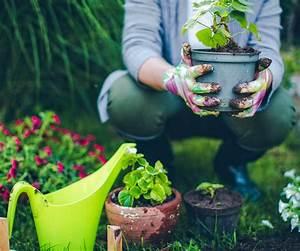 Gartenarbeit Im August : dekor mobel ihre august gartenarbeit checkliste und ~ Lizthompson.info Haus und Dekorationen