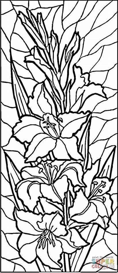 Glass Stained Coloring Printable Patterns Lilies Painting